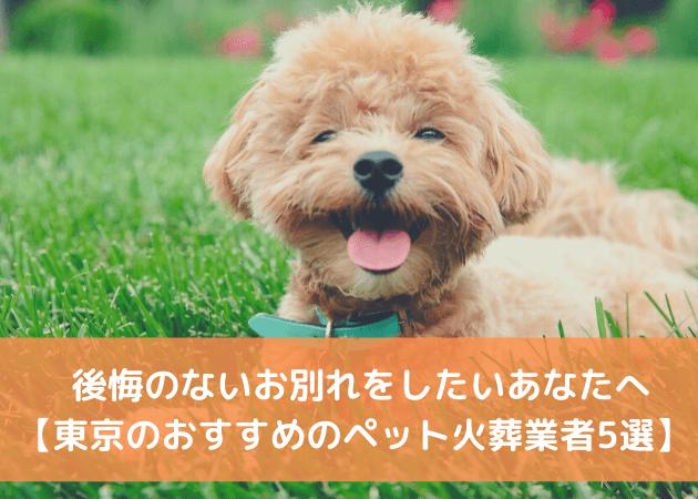 東京 ペット火葬