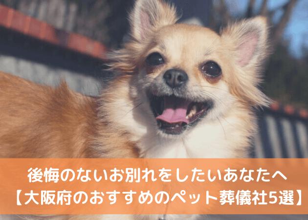 ペット火葬 大阪