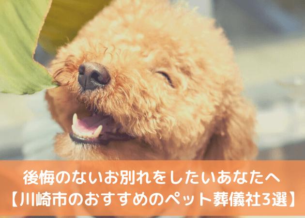 ペット火葬 川崎