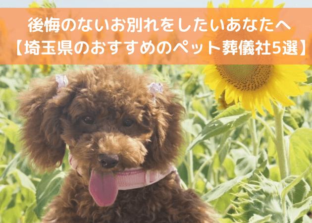 埼玉県 ぺット火葬