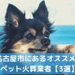 ペット火葬 名古屋