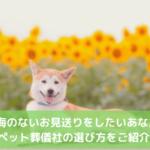ペット火葬・葬儀社 選び方
